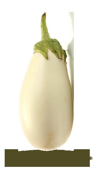 blanche
