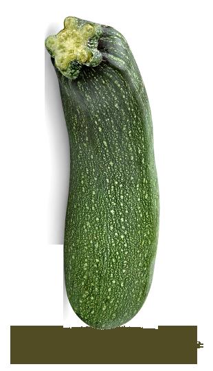 Détail Produit Fraicheurquebeccom